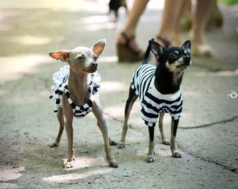 Stripped Jersey Dog Top - Dog Top- Dog T-shirt - Dog Clothing - Pet Clothes - Available to Any Breed