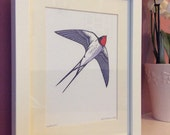 Swallow - Framed Giclee Print.