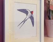 Swallow - Framed Giclee Print.