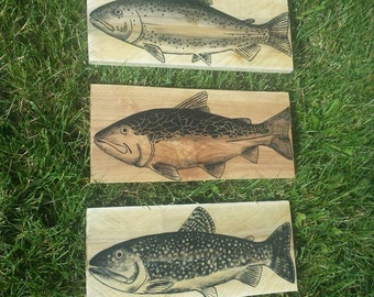 Rainbow trout wall decor