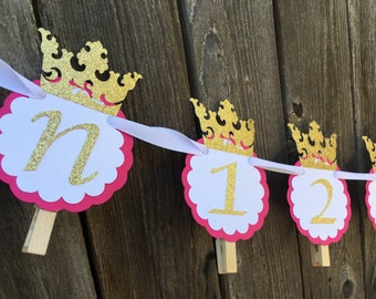 Birthday picture banner, First birthday picture banner, First Birthday photo banner, Pink and gold birthday banner, Birthday Photo Banner