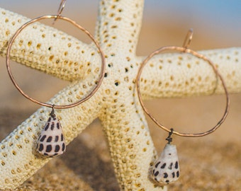 Hebrew Cone Shell Hoop Earrings
