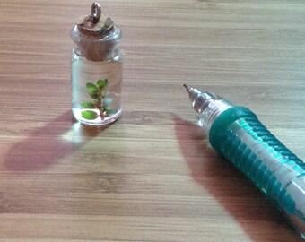 Botanical cork jar necklace