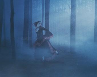 Digital Background - Woods ~ Forest