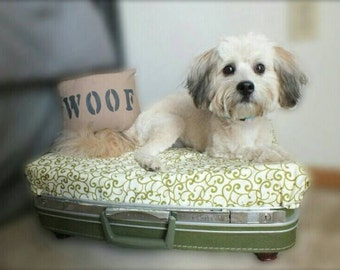 Vintage Suitcase Pet Bed- Green Swirls