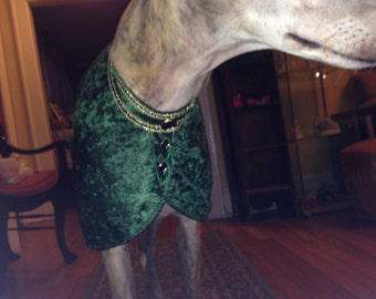 Renaissance style greyhound coat