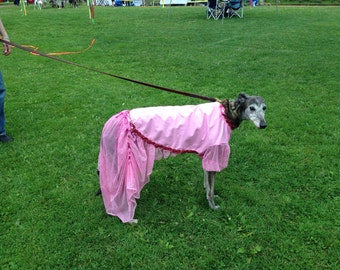 Greyhound Pretty in pink party dress