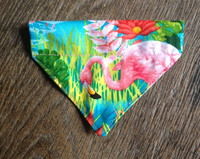 Bandana pour chat - Tropical Flamingo