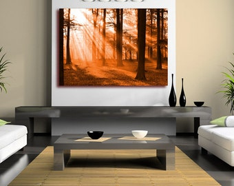 Warm Autumn Forest Canvas Wall Art (Framed version U.K only) Rolled Canvas Poster, or Box Framed. Forest in Fall