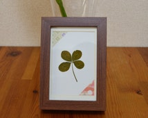 Lucky Hand-Picked 4-Leaf Clover (brown frame)