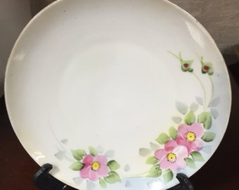 Hand-painted china plate