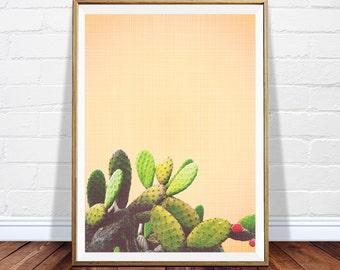 Cactus printable art - desert wall art - digital cactus poster - printable cacti - cactus decor - bold art - desert print - INSTANT DOWNLOAD