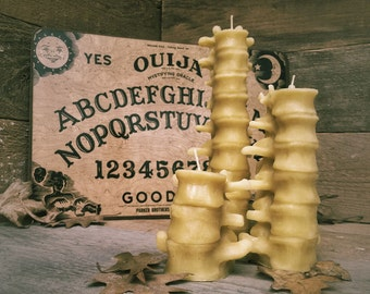 Beeswax Human Spine Candles Set of 3