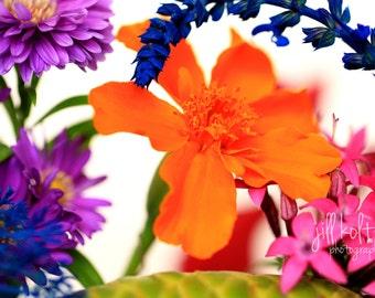 Orange Floral on White
