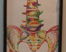 Abstract Rainbow Spine and Pelvis Drawing Framed