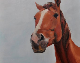 Brown horse - oil on canvas (Oil on canvas) 40 x 40 cm.