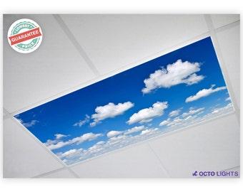 Fluorescent Light Covers - Cloud 011