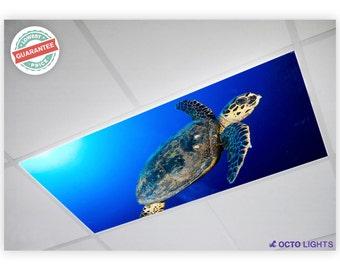 Fluorescent Light Covers - Ocean 008