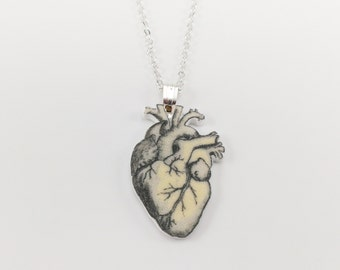 Anatomical heart chain