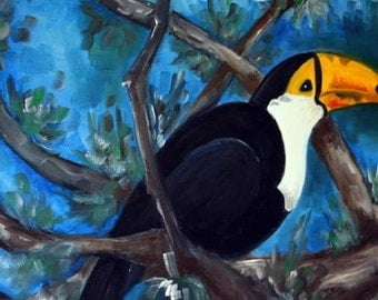 "Brazilian Toucan from Amazon. Oil painting 18""x24"""