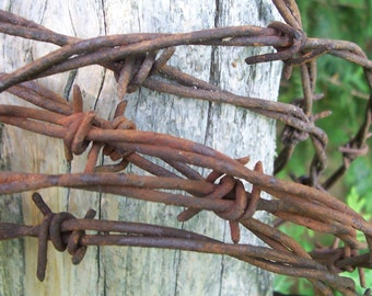 Vintage, Rustic, Barbed Wire.