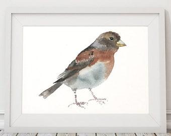 Nursery art Brambling print Cute bird watercolor ACW124