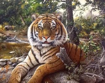 Tiger Tops