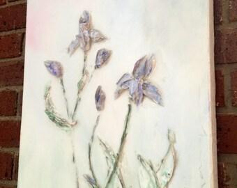18x14 irises