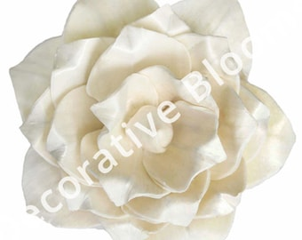 Sola Flowers - Set of 50 Ivory Small Margot Sola Flowers, Balsa Wood Flowers