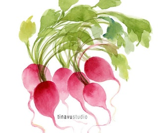 "Radish Bunch. Watercolor vegetable. Watercolor art Giclée print. Watercolor radishes. 8""x10"""