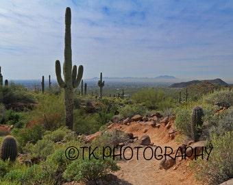 Usery Park. Phoenix, Arizona. 5x7