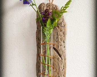 Driftwood, wall hung, bud vase, test tube, flower holder
