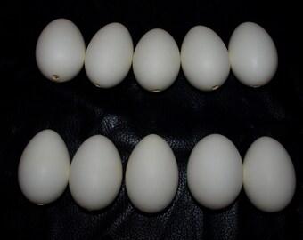 Ten (10) un-painted - Blown Duck Eggs - Single hole