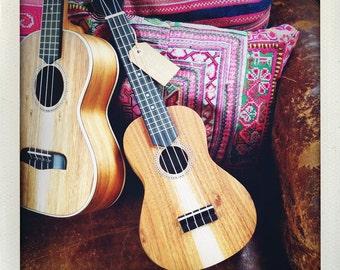 Beautiful Portuguese Concert Ukulele - Simple version from APC