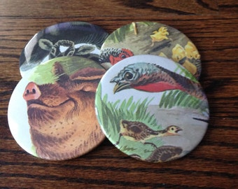 Farm Animal Coasters (Pack of 4)