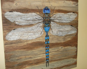 Blue Eyed Darner, Dragonfly, reclaimed wood art, animal art