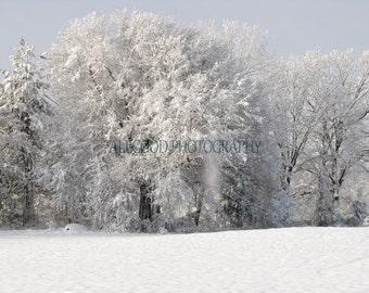 Overload, Winter Landscape, Falling