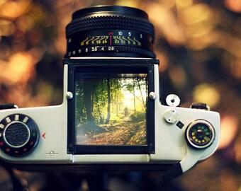 Autumn Through The Viewfinder, Nature Photography, Autumn Landscape, Peak District, Wall Art, Home Decor