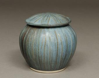 Lisa's favorite blue jar