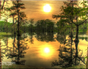 Sunset, Millpond, Yellow Haze, Spanish Moss, Photography, Wall Art