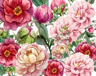 14 Flowers Clipart, Floral Elements, Flowers, Flowers Clipart, Floral, Flower Collage - Commercial Use CU OK