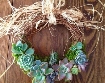 "6.6"" Succulent Trimmed Wreath ""Julie"""