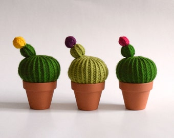 Grand Pointe - Cactus wool