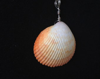 Silver Wire Wrapped Seashell Pendant