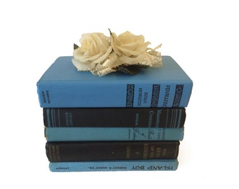 Blue Vintage Books, Blue and Black Home Decor, Baby Blue Wedding Decor, Photography Prop, Instant Library