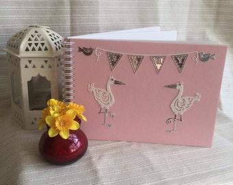 Baby Stork Keepsake Book