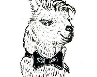 Dapper Llama Art Print