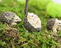 3 Miniature Hedgehog, Fairy Garden Hedgehogs, Resin Animals, Miniature Landscape, Terrarium Supplies, Wildlife, Dollhouse Miniatures