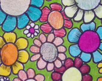 Flowers in color pencil