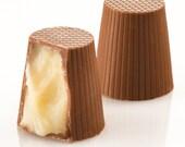 Award Winning White Velvet Chocolate Truffles Kosher set of 12 with FREE BONUS
